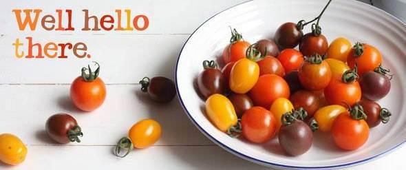 Abel & Cole organic food