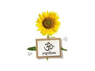 Yogabox Gutschein