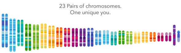 23andMe to Find Your Roots