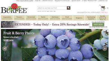 Burpee Website