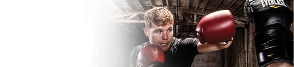 Everlast Boxing