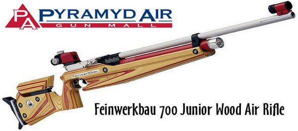 Pyramyd Air Guns and Pellets