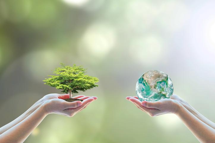 Gutscheine für nachhaltige Produkte